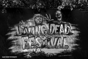 Dead Festival by GlassHouse-1