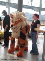 cosplay - Arcanine by Isi-Daddy