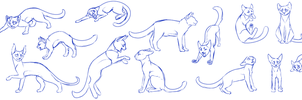 Cat pose practice by Sinful-Souls