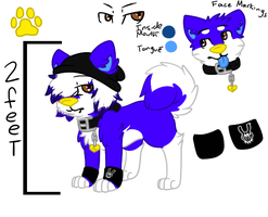 New Nuu Ref by RegallyFlawed