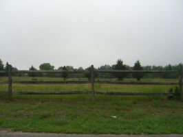 Roadside Fence Stock by RX-stock