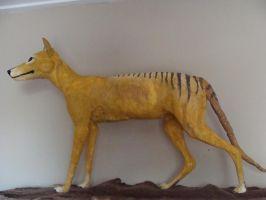 umm there's a thylacine in my room by Lot1rthylacine