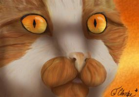 Mapleshade Realism by Rexadecimal