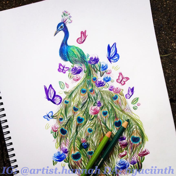 Peacock by hyaciinth