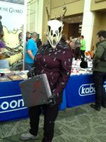 ECCC pictures: WTNV by ParadoxialGamer