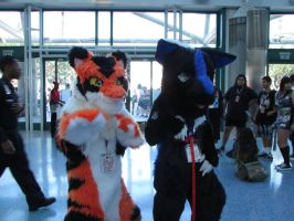 AX 2015 Day 1: Kingsley and Flamie Shadow Tiger by LucarioShadow