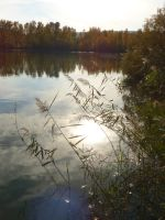 The pond which absorbed the sun by A1Z2E3R