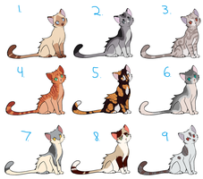 cat adoptables #4 :CLOSED: by SamuraiAdopts