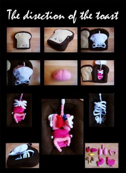 The disection of the toast by Toast-Mania-Club