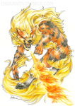 Arcanine by Silverbirch