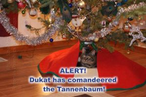 Commandeered Tannenbaum by 12monthsOFwinter