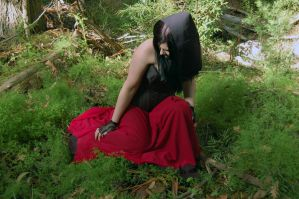 Jonet Forest Series 11 by Storms-Stock