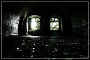 Green vault (2) by 0-Photocyte