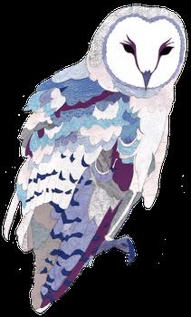 Barn Owl by Myunfelia