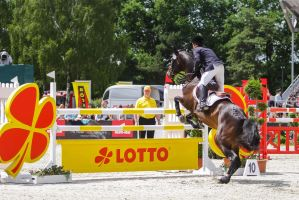 3DE Show Jumping Phase Stock 7 by LuDa-Stock