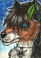 27. ACEO - Diffy by Tir-Goldeness