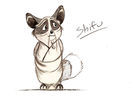 Shifu by Mitch-el