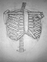 Ribcage Drawing by slipsk8r