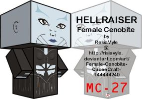 Hellraiser Female Cenobite by Viper005