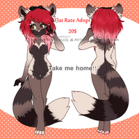 RacoonDog Adopt! {CLOSED} by miulk