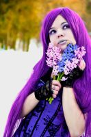 purple by 13-Melissa-Salvatore