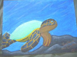 turtle on the seabed revised by meggyweggy