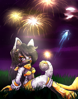 .:Fireworks:. by Sancosity