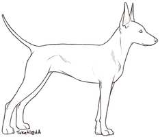 Free lines -- Manchester Terrier by tuketi