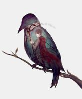 Dusty old crow by fran-666