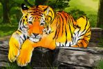 Tiger...... the jungle king. by himanshusoni100