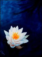 Water Lily by TheTruthSeeker