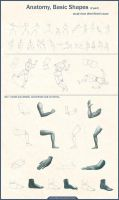 Anatomy Basic Shapes ll part by Azot2014