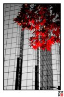the reds leaves downtown by tensai-riot