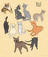 ThunderClan by Breadtholdt