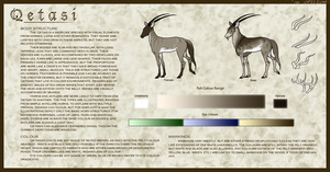 Qetasi Species Sheet by urilium