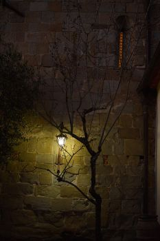 A light in the evening by seianti