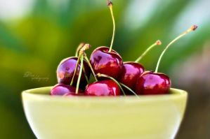 Cherries by Dina90T
