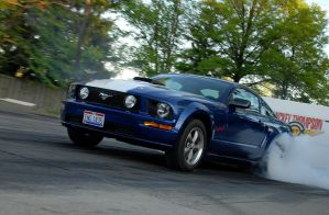 New Mustangs Can Do It Too by WeezyBlue
