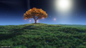 Lonely Tree by wuruhi