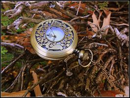 Pocket watch by LeMoRkofF