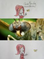 :Mariposa: by Misery-Mistery
