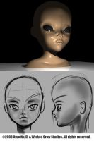 3D Generic Head 01 by 3dmodeling