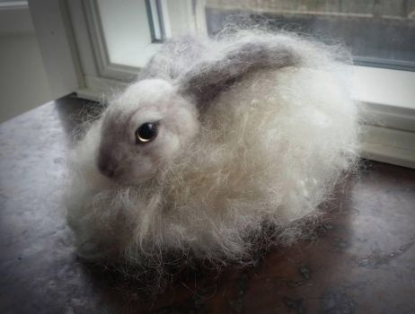 Needle felted Angora bunny (for sale) by Dynamitella