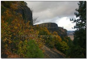 Autumn in the Gorge  002 by LoneWolfPhotography