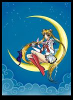 Bishoujo Senshi Sailor Moon by Zackichan