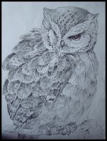 Owl by 0Pearl0