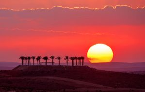 The desert Sunset by haimohayon