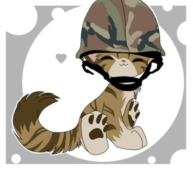 Army Kitten by TheSpyWhoLuvedMe