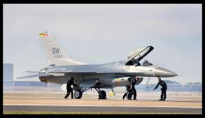 F 1 6 by sandwedge