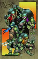 TMNT: colored by VehementStudios